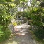 もとある姿をいかした、緑あふれるお庭