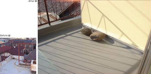 防水加工を施したばるこいー【屋根】