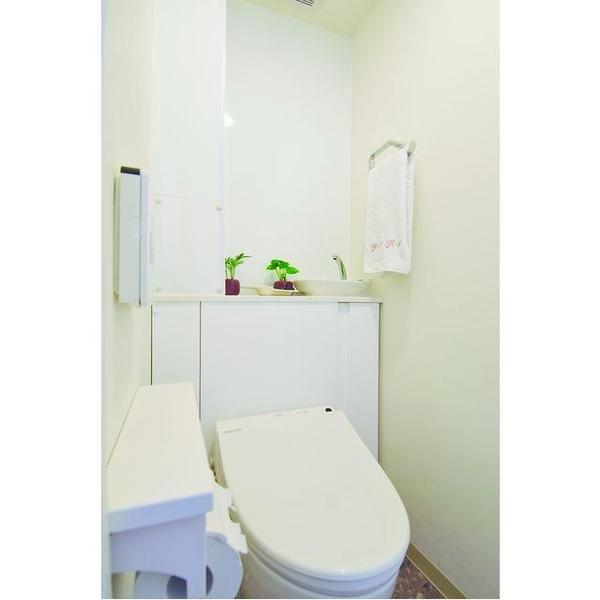スッキリした見栄えのトイレ