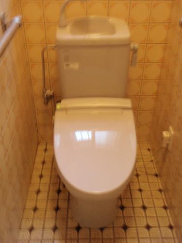 便利なトイレにチェンジ