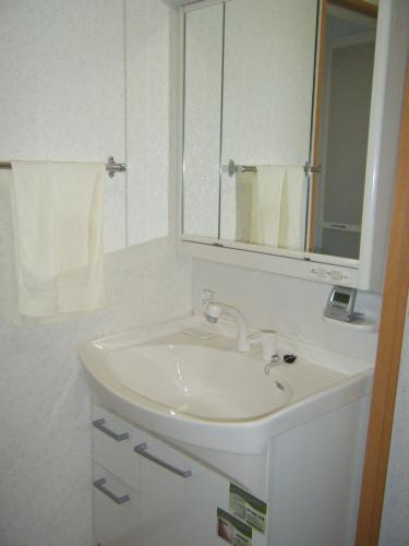 大きなボウルで便利な洗面化粧台